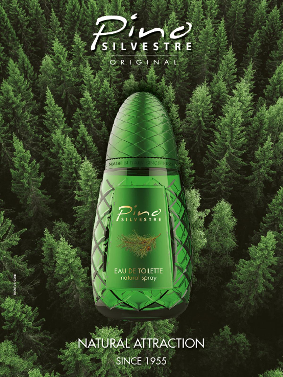 Ein Bild von eine Pino Silvestre Parfum Visual